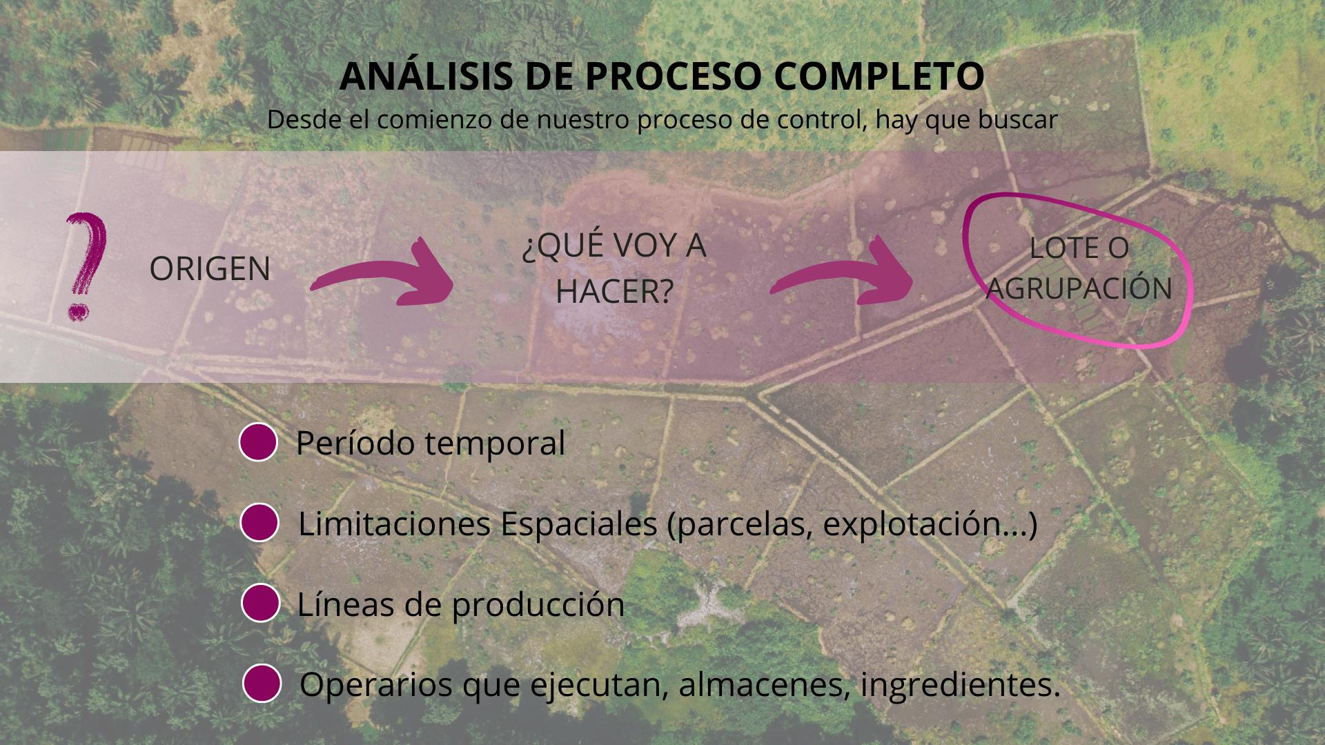 Trazabilidad Diapositiva 3